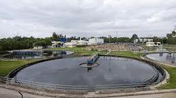 somoxnatura: Microorganismos a la carta para depurar aguas residuales | Biochemical Engineering | Scoop.it