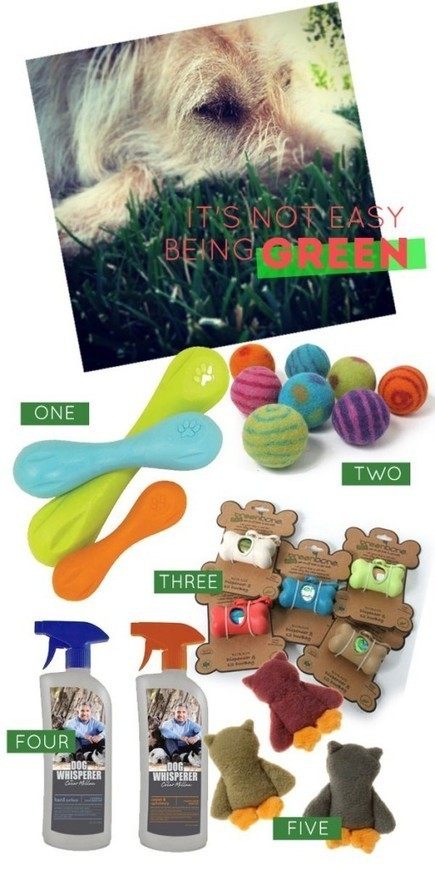 eco friendly dog products via House of Harvey   Dog Products   Scoop.it