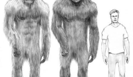 Misteri: Fotografato Bigfoot da biologi ricercatori | coscienza universale | Scoop.it