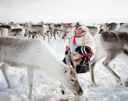 The reindeer whisperers: Meet Norway's Sami tribe — the world's last remaining nomads | Indigenous Peoples | Scoop.it