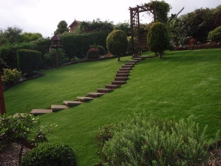 5 Reasons You Should Install an Artificial Grass Lawn | Lawn Grass Care - Lawns For You | Scoop.it