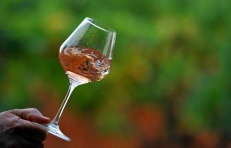 Provence: Malgré une baisse de la production, un millésime 2015 très attendu | Route des vins | Scoop.it
