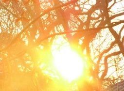 Travaux de printemps : le soleil comme énergie | Immobilier | Scoop.it