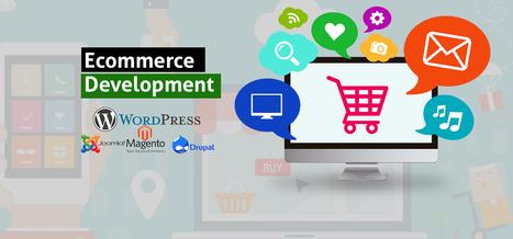 Ecommerce Web Development Company India   Reliable Website Design Company in Delhi   Scoop.it