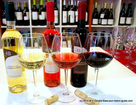 Vineyard to glass Portugal's mellow wine revolution | Wine Liquid Lisbon | Scoop.it