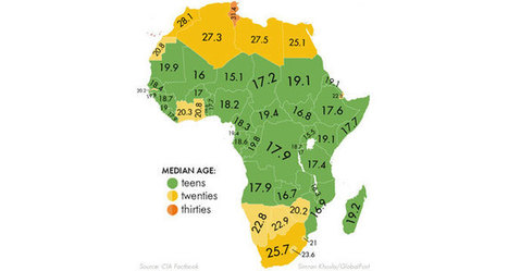 Disruptive innovation: The most viable strategy for economic development in Africa | African futures insight | Scoop.it