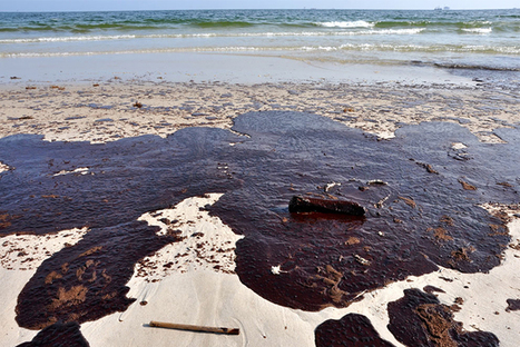 GULF OIL DISASTER: FIVE YEARS ON | All about water, the oceans, environmental issues | Scoop.it