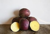 Researchers Create Potatoes with Higher Levels of Carotenoids - USDA (2012) | Eat well, live better | Scoop.it