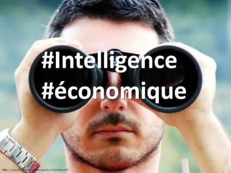 27/11 #IE #Stratégie d'#influence pour PME : comment préserver son marché, sa relation client et sa #ereputation | SIVVA | Scoop.it