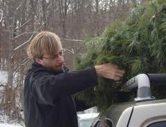 Ohio Christmas trees hit hard by summer drought - Chillicothe Gazette | Climate Chaos News | Scoop.it