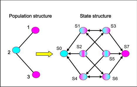 Exploring evolutionary dynamics in a class of structured populations | Dynamics on complex networks | Scoop.it