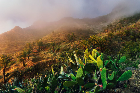Astonishing Views of the Canary Islands Photographed by Lukas Furlan | CLOVER ENTERPRISES ''THE ENTERTAINMENT OF CHOICE'' | Scoop.it