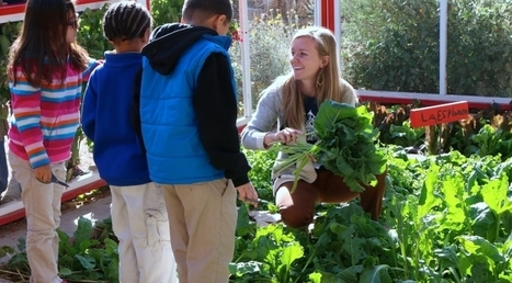 UA Launches Center for Regional Food Studies | UANews | CALS in the News | Scoop.it