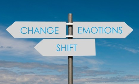 The 12 Emotional States of Change - People Development Network | MILE Leadership | Scoop.it
