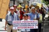 Bataille pour les semences en Amérique latine | Questions de développement ... | Scoop.it