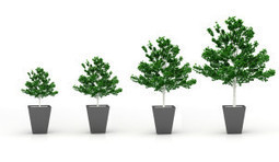 How to Succeed as Scope and Scale Increases | Let's Grow LeadersLet's Grow Leaders | Building the Digital Business | Scoop.it