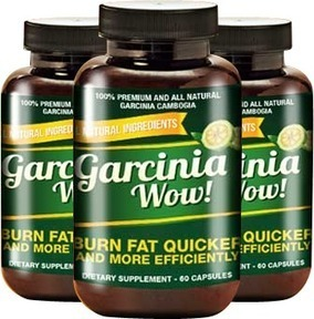 Pure Garcinia Plus Review - Slim Fast And Other Weight Loss Products!   Effective Natural Weight Loss Remedies   Scoop.it
