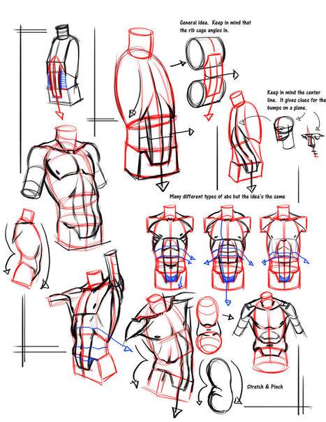Simple form break down abs   Dessin   Scoop.it