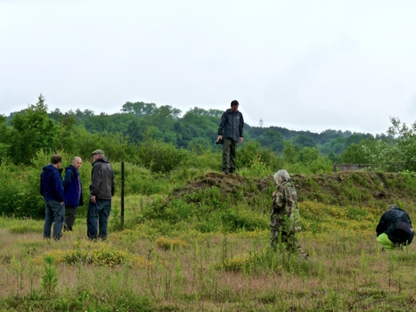 What's new, expedition to Lodge Hill training area in Kent and found stories, rewilding introduction of dormouse and much more....   World Environment Nature News   Scoop.it