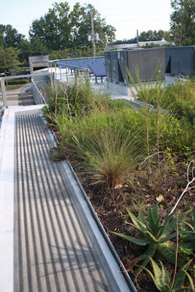 Living Green Roofs! Urban Farms, City Greening and Permaculture ...   Vertical Farm - Food Factory   Scoop.it