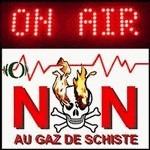 GAZ DE SCHISTE - info actualités en direct | LesZinfos.fr - Actu (news) en direct | Scoop.it