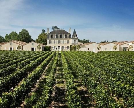 Bordeaux 2012: Still waiting for big names | Vitabella Wine Daily Gossip | Scoop.it