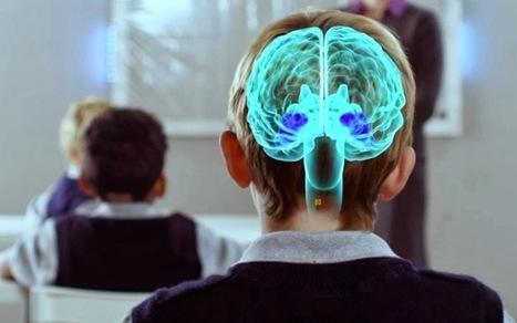 La neurociencia demuestra que el elemento esencial en el aprendizaje es la emoción | FOTOTECA INFANTIL | Scoop.it