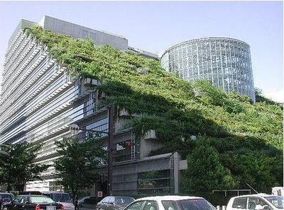 ¿ AZOTEAS VERDES ..?  Una manera de decorar el mundo...!!   ECOLOGIA Y SALUD: Tecnologías para cuidar el ambiente   Scoop.it