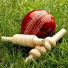 cricket-world