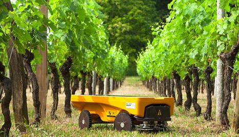 Un robot solaire comme une alternative aux désherbants chimiques | Le Vin et + encore | Scoop.it
