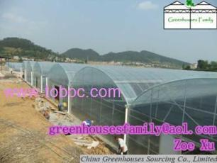 Poly Gutter Connected Greenhouses Seller China, Buy Poly Gutter Connected Greenhouses from China Greenhouse Sourcing Co., Ltd   Global B2B Marketplace, Business to Business Portal Company - Toboc International   Scoop.it