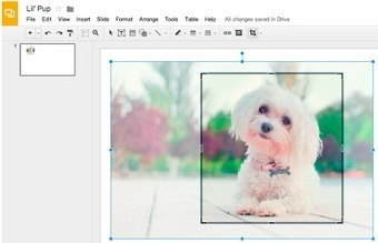Google Slides Now Allows You to Edit, Crop,and Add Borders to Images | Elementary Technology Education | Scoop.it