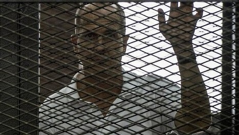 Egypt flags release for jailed journalist Peter Greste: report | SDEHS Legal Studies | Scoop.it