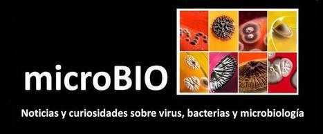 Los top ten de microBIO en 2014 | microBIO | Scoop.it
