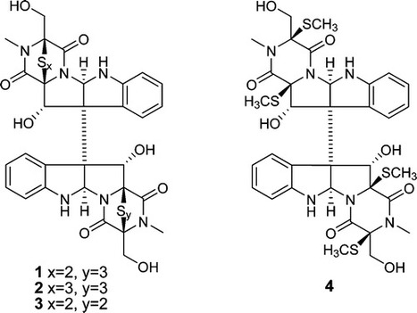 Cytotoxic Metabolites from the Antarctic Psychrophilic Fungus Oidiodendron truncatum | natural product | Scoop.it