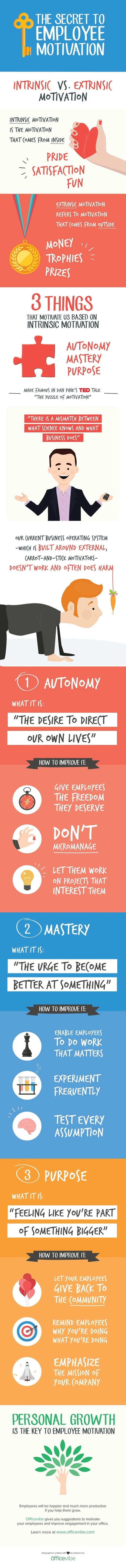 The Secret To Employee Motivation (Infographic)   HR & NWOW   Scoop.it