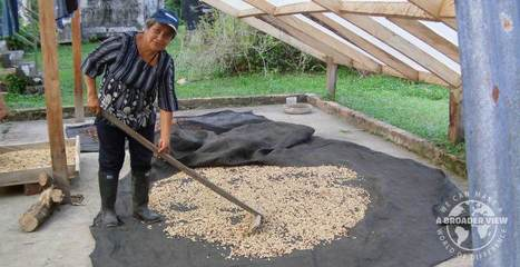 "Volunteer Abroad Colombian in a Coffee Farms (La Mesa) - Community Development | ""#Volunteer Abroad Information: Volunteering, Airlines, Countries, Pictures, Cultures"" 