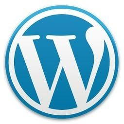 Learn Wordpress from beginning to end (Part - III)   Satva Design Studio   Search Engine Optimization   Scoop.it