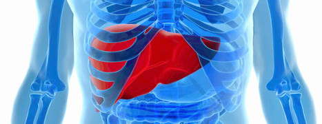 Diabetes and How to Protect your Liver | DiabeTV | Diabetes tipo II y como cuidarse | Scoop.it
