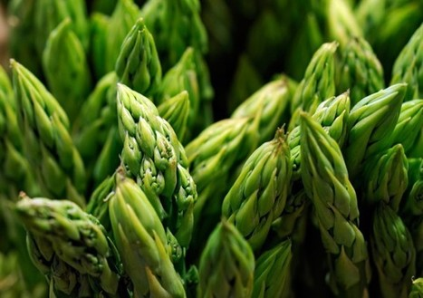 Awesome Health Benefits of Asparagus | The Basic Life | Scoop.it