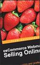 eCommerce Web Hosting | eCommerce Providers | Scoop.it