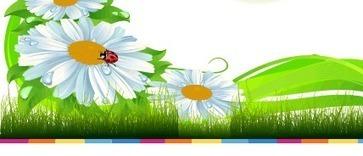 ..:: El uso de las Tr3s Rs Ecológicas ::.. | T+ de educación | Scoop.it