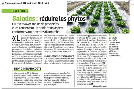 Salades : réduire les phytos - La France Agricole | Agriculture urbaine, architecture et urbanisme durable | Scoop.it