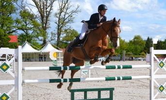 Équitation Une fin de vie pas toujours rose pour les chevaux - Le JSL | Cheval et Nature | Scoop.it