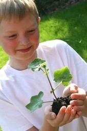 Ways To help The Environment | The Glory of the Garden | Scoop.it