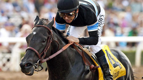 Record 201 horses pre-entered for Breeders' Cup Championships set for Oct 31 and Nov 1 | Horse Racing News | Scoop.it