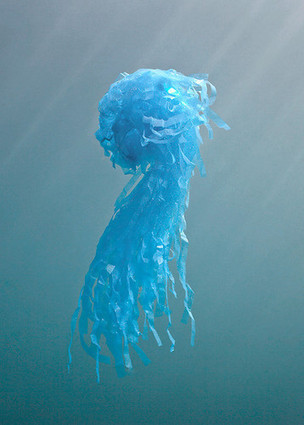 These Underwater Sculptures Make Ocean Pollution Look Gorgeous | art education | Scoop.it