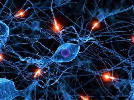 Neuroscience vs Free Will » IAI TV | With My Right Brain | Scoop.it