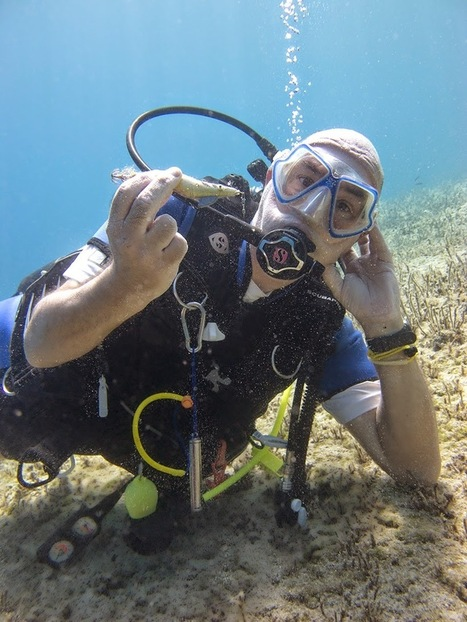 Scuba Tech Diving Centre, Cyprus: Scuba Diving- Pure and Simple | Scuba Diving in Cyprus | Scoop.it