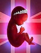«Obama, ecco il mio piano di sviluppo», il figlio in arrivo di William e Kate già attivo su Twitter | JIMIPARADISE! | Scoop.it